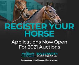 Bolesworth Elite Acutions (South Yorkshire Horse)