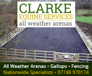 Clarke Equine Services  2018 (South Yorkshire Horse)