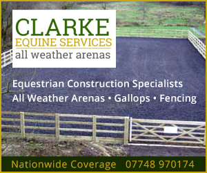 Clarke Equine Services 2020 (South Yorkshire Horse)
