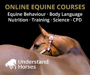 Understand Horses (South Yorkshire Horse)